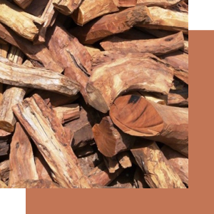 Sandalwood is one of the raw materials used in the woody olfactory family, with a warm and creamy smell.