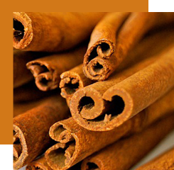 Cinnamon, which comes from the bark of a tree, evokes the sweetness and warmth of spices