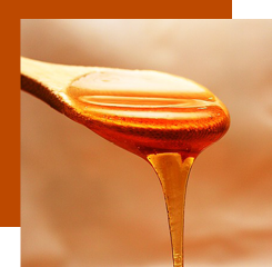 Honey, used in perfume in the form of absolute beeswax, gives to a fragrance a warm and sweet smell