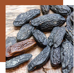 tonka bean brings a greedy side to a fragrance but also an animal nuance