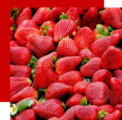Strawberries can take on several shades in a perfume: sweet, floral, green, ...