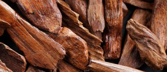 Sandalwood is a fragrant wood with many virtues, which has been used for centuries for its warm and velvety scent