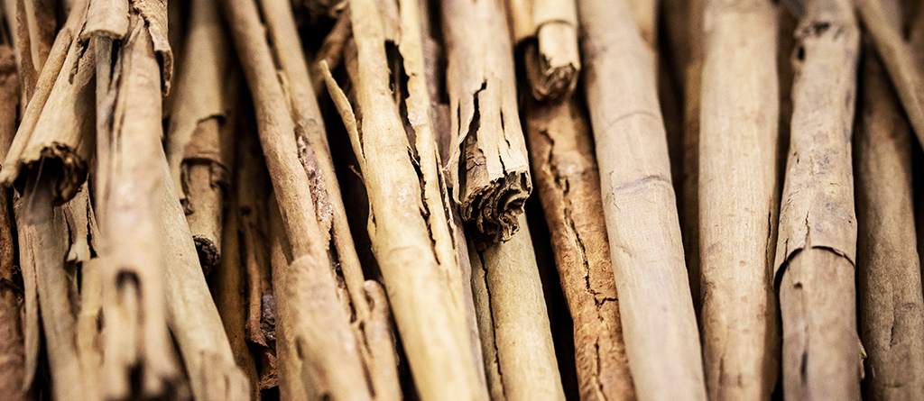 cinnamon is one of the oldest spices used and its scent warms the fragrances of woody and sweet notes