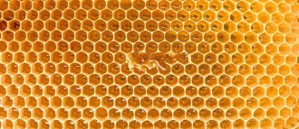 honeyed notes in perfumery bring a regressive but also sensual aspect to compositions